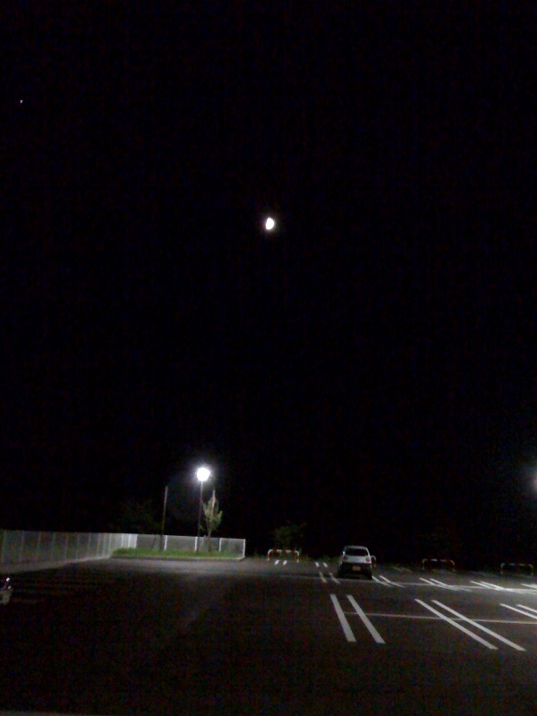 月とツイン